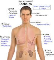 tips diabetes alami