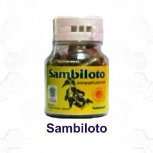 sambiloto-300x300