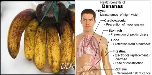 banana pisang