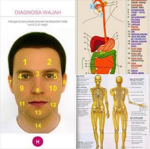 diagnosa wajah